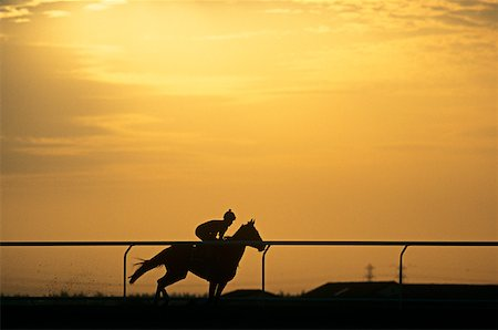 A silhouette of a jockey riding a horse Stock Photo - Premium Royalty-Free, Code: 614-01819223
