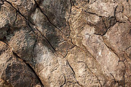 Close up image of cracked rocks Stock Photo - Premium Royalty-Free, Code: 614-02985505