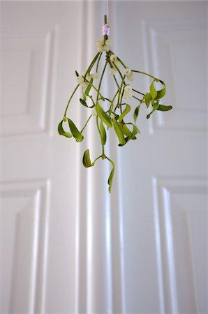 Mistletoe Stock Photo - Premium Royalty-Free, Code: 618-05963222