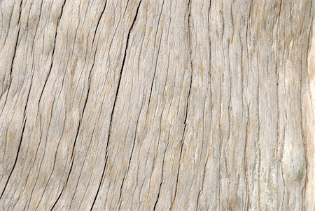 solid - Dried, cracked, seasoned wood Stock Photo - Premium Royalty-Free, Code: 618-06538624