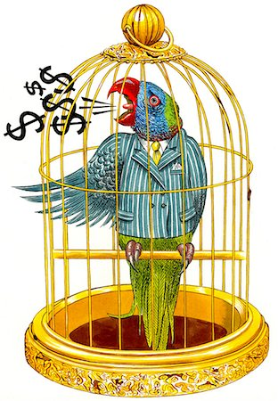Business Parrot Stock Photo - Premium Royalty-Free, Code: 618-06618081