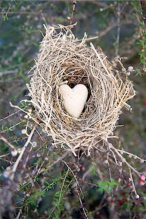 Stone Heart in Bird Nest Stock Photo - Premium Royalty-Free, Code: 618-06818463