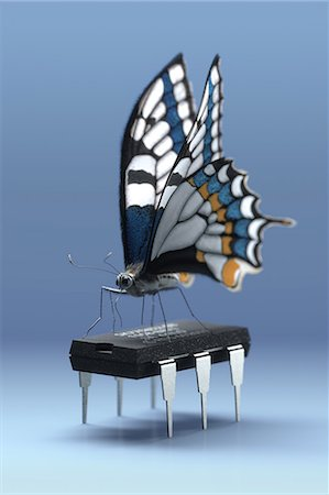 Butterfly standing on a six-legged computer chip Stock Photo - Premium Royalty-Free, Code: 618-06818531