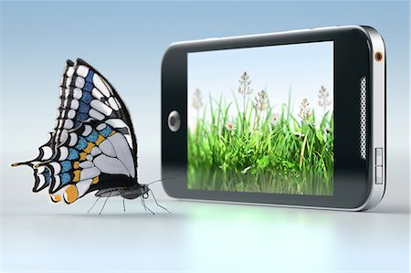 Butterfly in front of smartphone displaying grass Stock Photo - Premium Royalty-Free, Code: 618-06818548