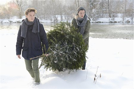 Teenage boys carrying Christmas tree Stock Photo - Premium Royalty-Free, Code: 618-07612090