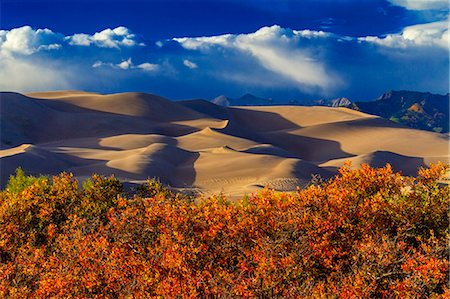 Great Sand Dunes National Park & Preserve,Colordo Stock Photo - Premium Royalty-Free, Code: 618-08063216