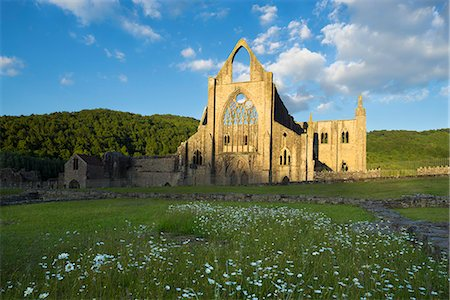 Tintern Abbey at Sunset Stock Photo - Premium Royalty-Free, Code: 618-08389150