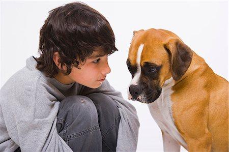 Boy looking at boxer dog Stock Photo - Premium Royalty-Free, Code: 618-03573564