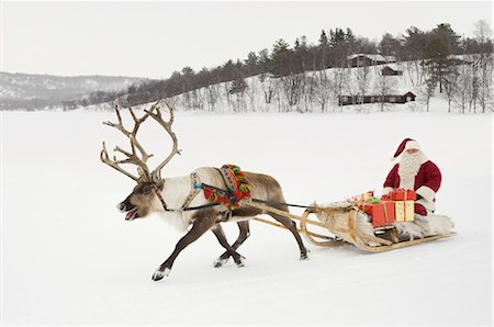reindeer in snow - A reindeer pulling Santa Claus and his sleigh of presents Stock Photo - Premium Royalty-Free, Code: 618-03612591