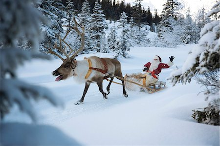 reindeer in snow - A reindeer pulling Santa Claus and his sleigh through the snow, Santa Claus waving Stock Photo - Premium Royalty-Free, Code: 618-03612607