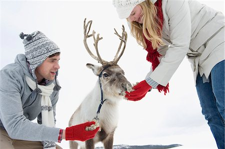 A young couple feeding a baby reindeer Stock Photo - Premium Royalty-Free, Code: 618-03612610