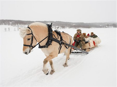 A horse pulling a sleigh full of people through the snow Stock Photo - Premium Royalty-Free, Code: 618-03612656