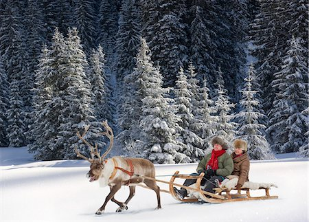 reindeer in snow - A reindeer pulling a senior couple on a sleigh Stock Photo - Premium Royalty-Free, Code: 618-03612676