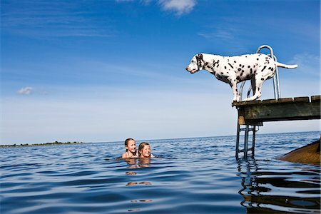 preteen girls bath - Dog on a jetty and girls swimming, Oland, Sweden. Stock Photo - Premium Royalty-Free, Code: 6102-03867487