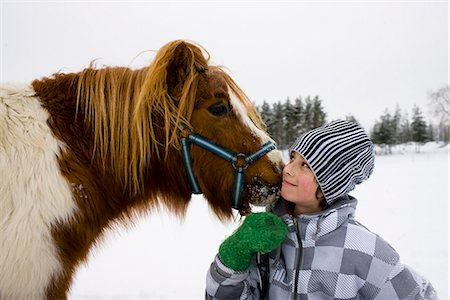 preteen kissing - Boy with a horse, Sweden. Stock Photo - Premium Royalty-Free, Code: 6102-03905100