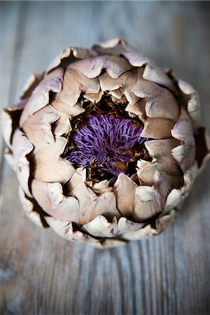 petal - Close up of artichoke Stock Photo - Premium Royalty-Free, Code: 6102-05802589