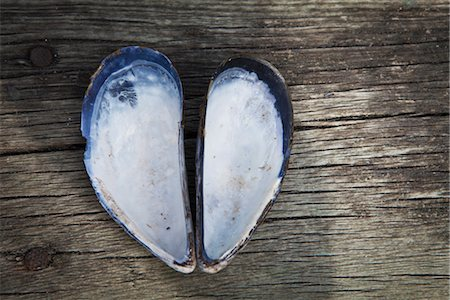 partnership - Heartshaped sell Stock Photo - Premium Royalty-Free, Code: 6102-05802658