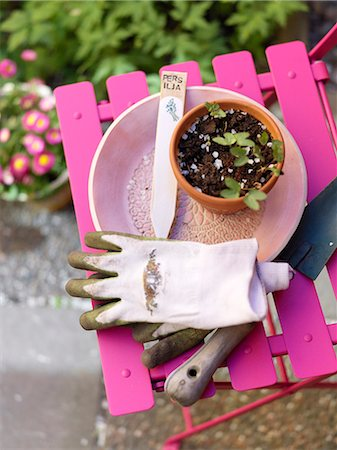 Still life with gardening gloves and seedlings in pot Stock Photo - Premium Royalty-Free, Code: 6102-06025886