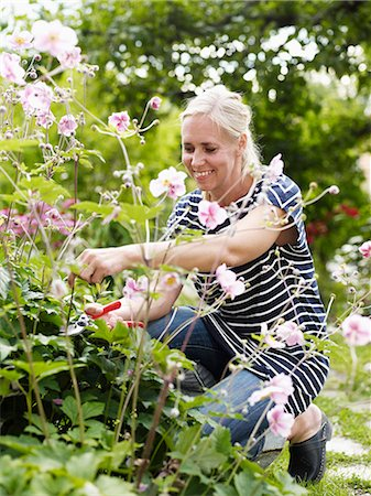 Woman gardening Stock Photo - Premium Royalty-Free, Code: 6102-06965485