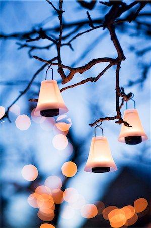 Illuminated lanterns hanging on branches Stock Photo - Premium Royalty-Free, Code: 6102-07158178