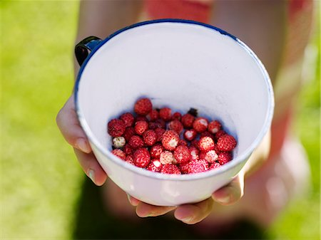 Hands with bowl with wild strawberries Stock Photo - Premium Royalty-Free, Code: 6102-07158297