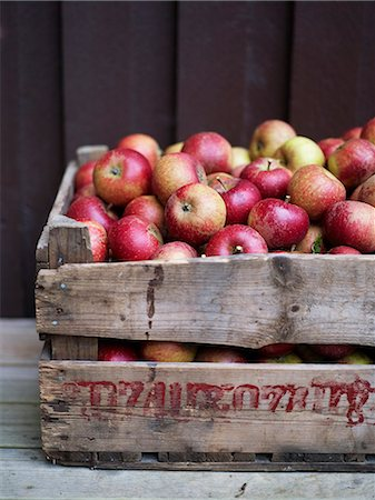 Apples in wooden box, Varmdo, Uppland, Sweden Stock Photo - Premium Royalty-Free, Code: 6102-07521618