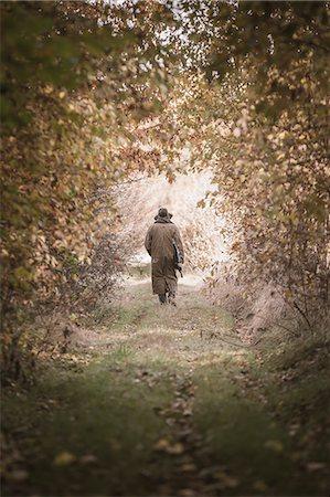 Senior man walking through forest Stock Photo - Premium Royalty-Free, Code: 6102-07602813