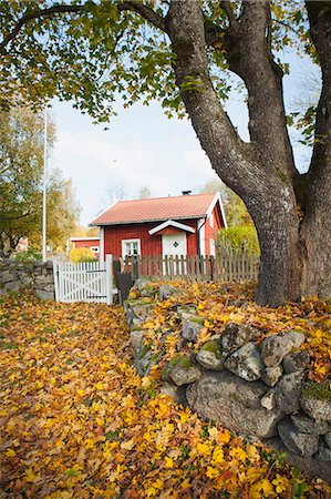 Wooden cottage at autumn, Ronneby, Blekinge, Sweden Stock Photo - Premium Royalty-Free, Code: 6102-07602810