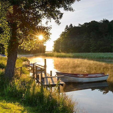 Rowboat moored at lake Stock Photo - Premium Royalty-Free, Code: 6102-08000486