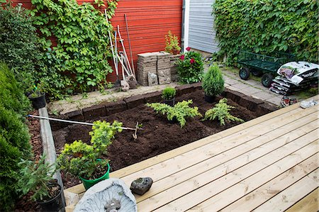 earth no people - View of small garden Stock Photo - Premium Royalty-Free, Code: 6102-08000751