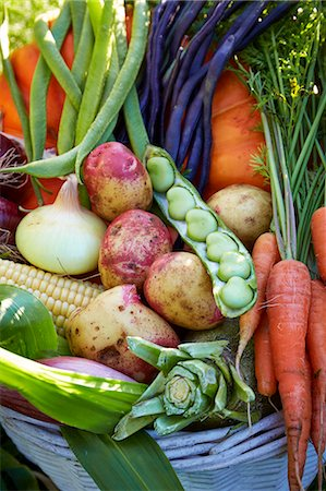 Vegetables in basket Stock Photo - Premium Royalty-Free, Code: 6102-08001358