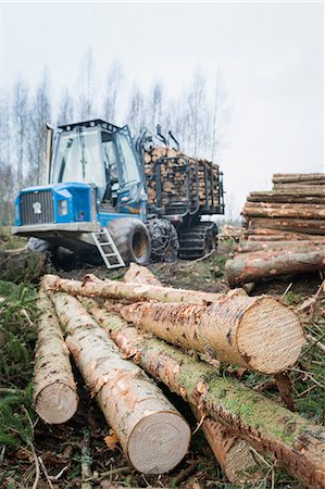 forestry - Logging vehicle with timber on foreground Stock Photo - Premium Royalty-Free, Code: 6102-08120935