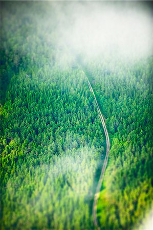 Road through forest Stock Photo - Premium Royalty-Free, Code: 6102-08566156
