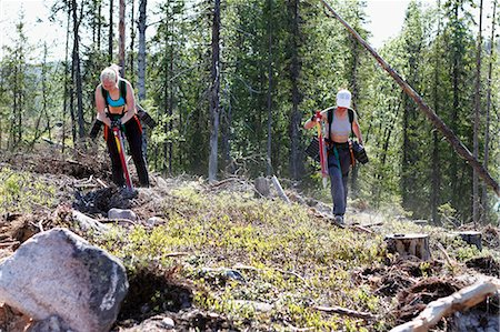 forestry - Women planting trees in forest Stock Photo - Premium Royalty-Free, Code: 6102-08760396