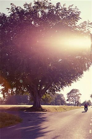 forward - Country road, person on motorbike Stock Photo - Premium Royalty-Free, Code: 6102-08761617
