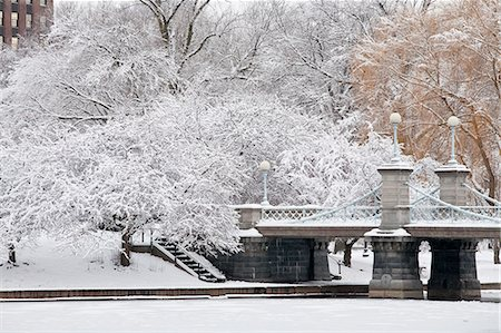 Snow covered trees with a footbridge in a public park, Boston Public Garden, Boston, Massachusetts, USA Stock Photo - Premium Royalty-Free, Code: 6105-05397312