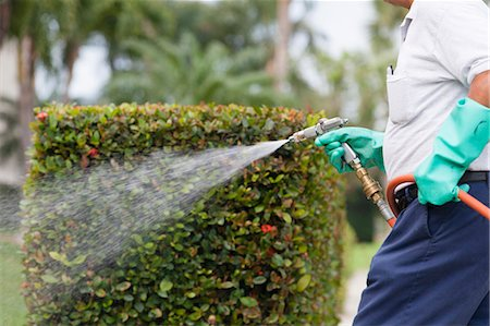 Pest control technician using high pressure spray gun and hose with heavy duty gloves Stock Photo - Premium Royalty-Free, Code: 6105-06702855