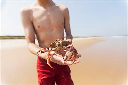 shirtless teen boy - Teenage holding crab on the beach, Block Island, Rhode Island, USA Stock Photo - Premium Royalty-Free, Code: 6105-06703019