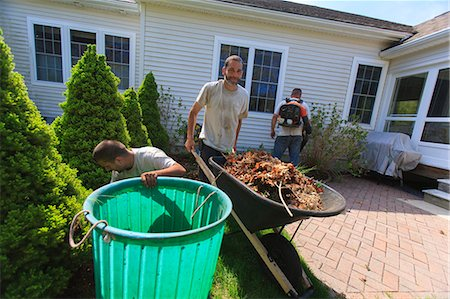 Landscapers clearing weeds into a bin at a home garden and carrying them away in a wheelbarrow Stock Photo - Premium Royalty-Free, Code: 6105-07521426