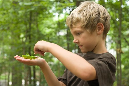 Child looking at Grasshopper Stock Photo - Premium Royalty-Free, Code: 6106-05447097