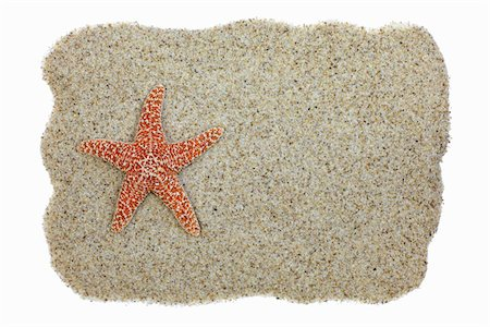 sea star - Starfish on Sand with Copy Space Stock Photo - Premium Royalty-Free, Code: 6106-05447839