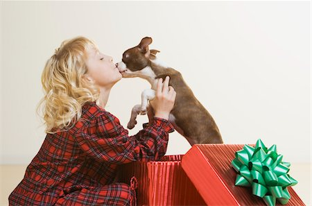 dog kissing girl - girl (6-8) kissing Boston Terrier puppy in giftwrapped box Stock Photo - Premium Royalty-Free, Code: 6106-05476923