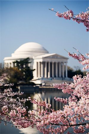 The Jefferson Memorial framed by cherry blossoms across the tidal basin in spring.  Washington D.C.,  March, 2006. Stock Photo - Premium Royalty-Free, Code: 6106-05486442