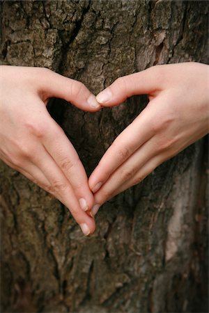 A child's hands forming a heart over a tree. Stock Photo - Premium Royalty-Free, Code: 6106-05490013