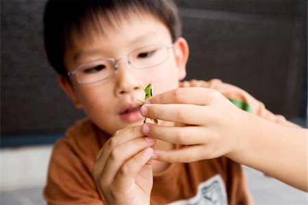 a boy holding a grasshopper Stock Photo - Premium Royalty-Free, Code: 6106-05493517
