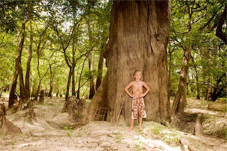 Little boy standing by tree Stock Photo - Premium Royalty-Free, Code: 6106-05407195