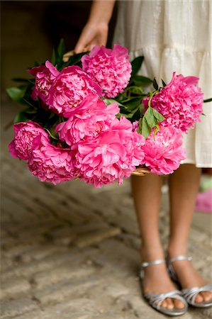 peony - bunch flowers in hand Stock Photo - Premium Royalty-Free, Code: 6106-05413744