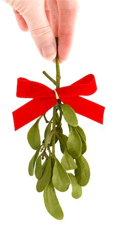 Hand Holding a Sprig of Fresh Mistletoe Stock Photo - Premium Royalty-Free, Code: 6106-05417026