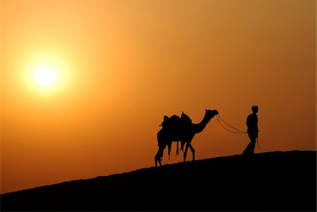 rajasthan camel - Man and his camel, India Stock Photo - Premium Royalty-Free, Code: 6106-05425443
