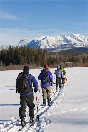 Four people cross country skiing with dog, rear view Stock Photo - Premium Royalty-Free, Code: 6106-05543431